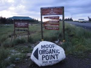 Moof Organic Point